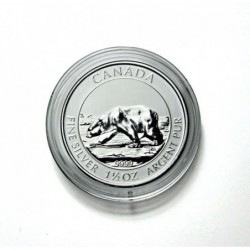 Lindner coin capsules for Canada Polar Bear 38.4x4.5mm per 10