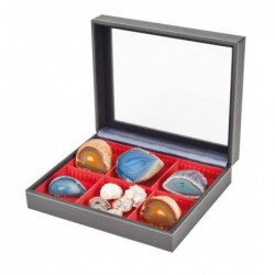 Nera Varius Collection Box from Lindner - choice of inserts