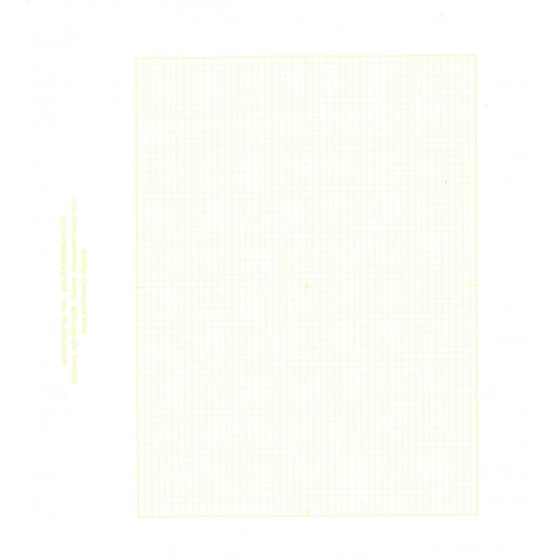 Prangnell Rapkin - Merton white Extra leaves x 50
