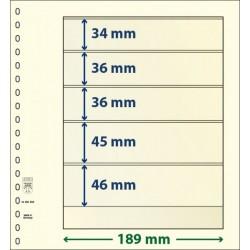 5 Pocket 34mm, 45mm, 46mm,...